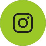 Cannabis Cove Instagram