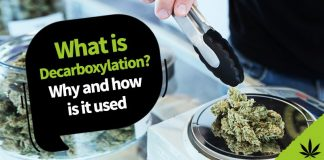what is decarboxylation
